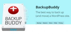 BackupBuddy-v5.0.3.3-Back-up