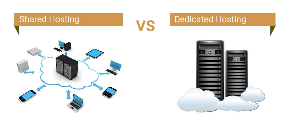 shared vs dedicated server